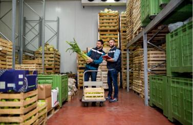 Como fazer uma boa gestão de fornecedores de alimentos?